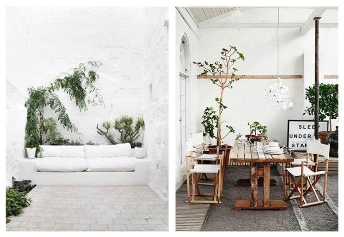 garden.001